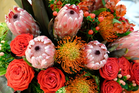 Luxury bouquet of fresh flowers protea and roses. Boho style Close up.