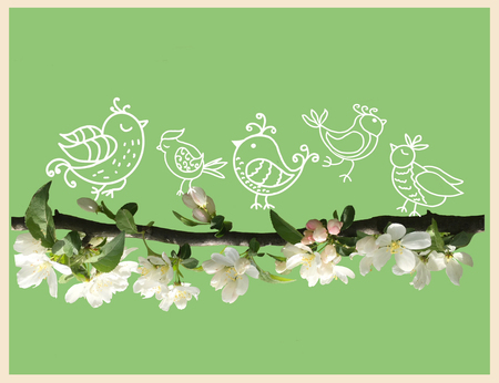 Stylized doodle style cute birds on blossom apple tree branch on green background. Template for card spring time concept. Stock fotó