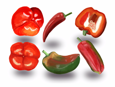 watercolor set of red and green sweet peppers and red hot chili peppers. Bell peppers paprika  isolated at white background illustration. Stock fotó