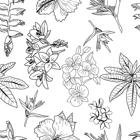 Vector pattern of hand drawn tropical flowers, leaves, jungle plants. Black and white exotic floral illustration. Can use composition for invitation to party or holiday. Illustration