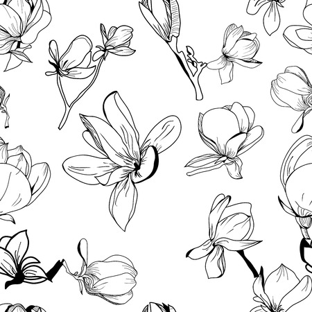 Vector pattern hand drawn Collection of magnolia flower and leaves, sketch illustration. Can use for pattern, template, banner, posters, invitation and greeting card design. Illusztráció