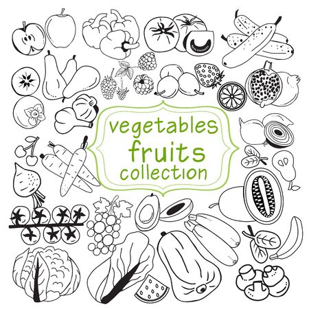 Vector Hand drawn collection of doodle organic fruits and vegetables line art element, doodles of fresh food symbol.