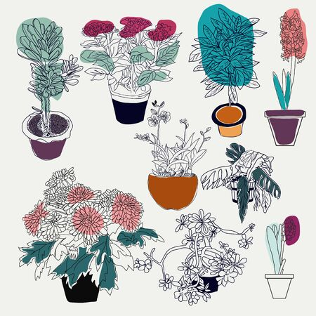 Vector hand drawn illustration collection of different house plants on white background perfect for invitations, birthdays, weddings, scrapbooking.