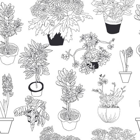 Hand drawn seamless pattern of different house plants on white background sketch style. Ilustrace