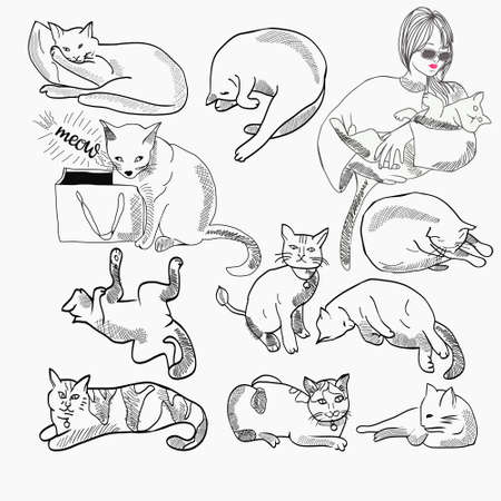 Vector hand drawn Set of Cats illustration In Different Poses and character design outline isolated on white.