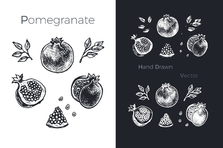 Hand drawn pomegranate icons set isolated on white and black chalk background. Sketch of fruits for packaging and menu design. Vintage vector illustration. Illustration