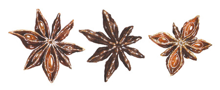 Anise star illustrations set. Hand drawn watercolor art of brown aniseed spice isolated on white background. Christmas decoration elements for kitchen. Banque d'images - 116736143