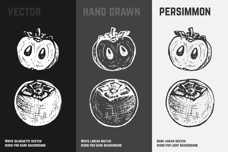 Hand drawn persimmon icons set isolated on white, gray and black chalk background. Sketch of fruits for packaging and menu design. Stock Illustratie