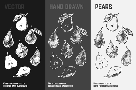 Hand drawn pear icons set isolated on white, gray and black chalk background. Sketch of fruits for packaging and menu design.