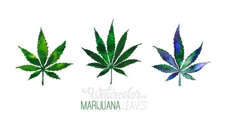 Hand drawn Cannabis leaves isolated on black background. Medical marijuana or weed vector watercolor style illustration Reklamní fotografie - 140495308