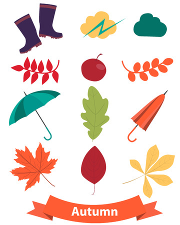 Icons set autumn. Leaves and accessories. Vector illustration Vector
