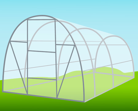the greenhouse: The greenhouse on the background of blue sky. Vector illustration