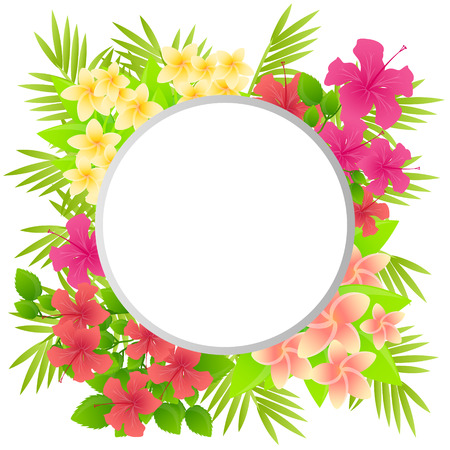 Tropical flowers Plumeria and Hibiscus. Background with place for text. Vector illustration Vector