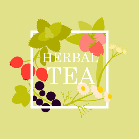 chamomile tea: Poster herbal tea with raspberry, chamomile, mint, linden, currant and rosehip.