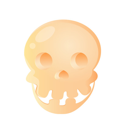 Cute skull isolated on white background.