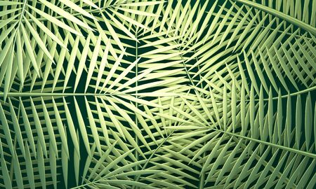 Green abstract background with metal palm leaves. 3d rendering 版權商用圖片