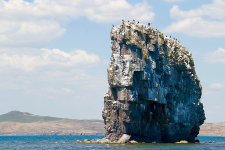 far east: Big rock standing in sea with colony of black cormorants sitting on top, Far East Marine Biosphere Reserve, Vladivostok, Russia