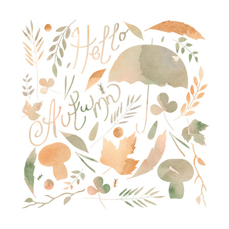 ocher: illustration depicting a set of leaves, twigs, berries, flowers, autumn elements. watercolor texture ocher, orange, gray brown Stock Photo