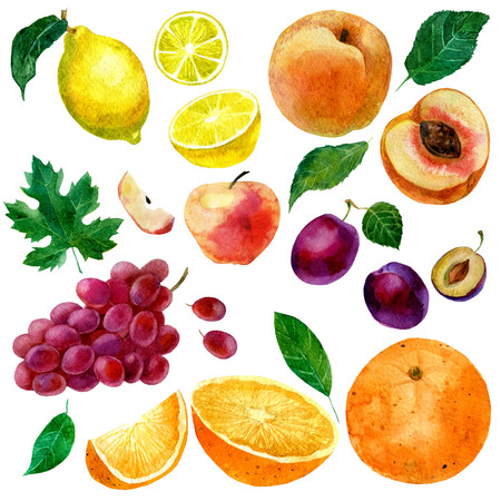 Illustration aquarelle, ensemble de fruits aquarelles, parties et feuilles, pêche, prune, citron, pomme orange et raisins Banque d'images - 74578507
