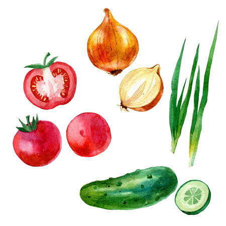 Watercolor illustration, set, image of vegetables, tomato and tomato slices, onion, cucumber and cucumber slices.
