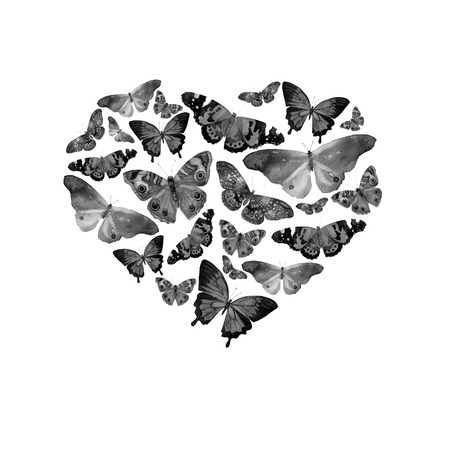 butterfly isolated: Watercolor heart filled with bright transparent butterflies of black and white and gray shades Stock Photo