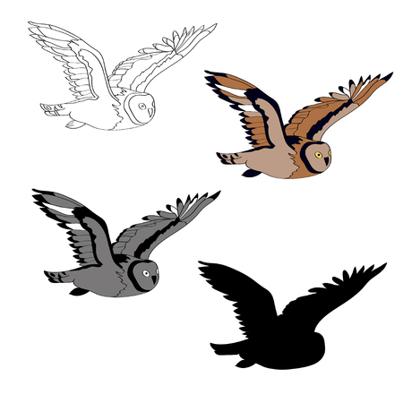 Vector illustration, an image of a flying owl. Black line, black and white and gray spots, black silhouette, color image Illustration