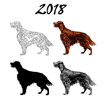 Vector illustration of an image of a dog breed of Setter. Black line, black and white and gray spots, black silhouette, color image. The inscription 2018 Illustration