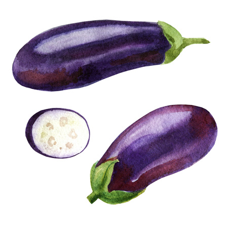 Watercolor illustration. Image of eggplant from different sides, aubergine slices Stock Photo