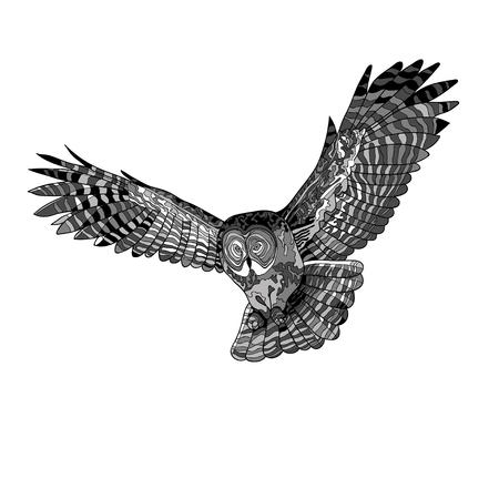Ilustracja wektorowa, obraz latającej sowy. Czarno-biała i szara ilustracja