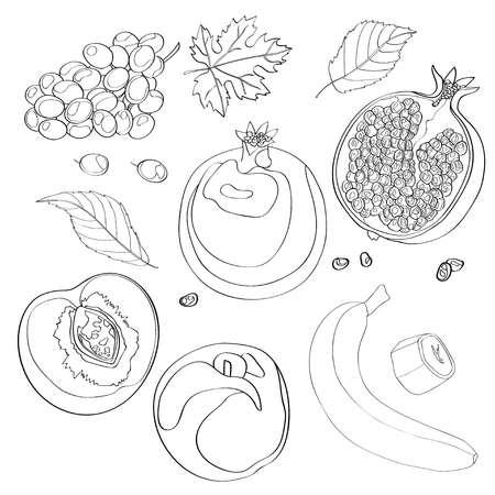 Vector illustration, set. Grapes, pomegranate, half pomegranate, peach, half peach, peach leaves, banana and a piece of banana. Black line outline