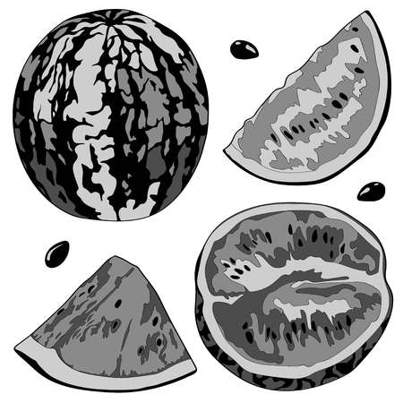 Vector illustration of a watermelon, half watermelon, a slice of watermelon. Black and white image Stok Fotoğraf