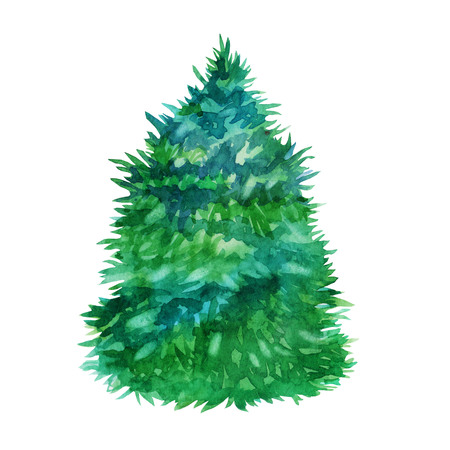Watercolor illustration. Christmas tree forest tree