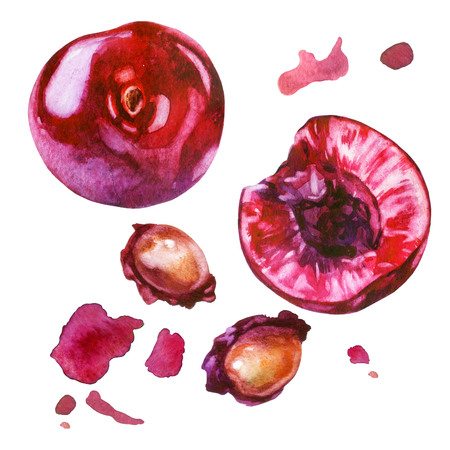 Watercolor illustration, set. Cherry berries, sliced cherry berries, cherry pits, red splashes of cherry juice.