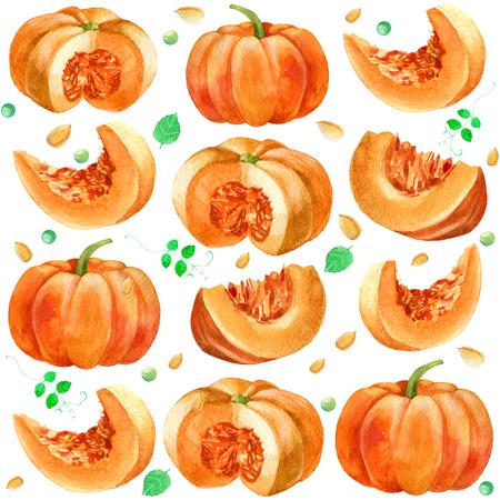 Watercolor illustration, pattern. Image of pumpkin pea leaves