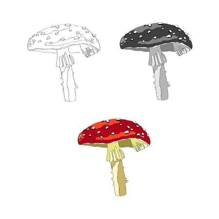 Illustration vectorielle. Image d'un champignon Amanita. Champignon avec chapeau rouge