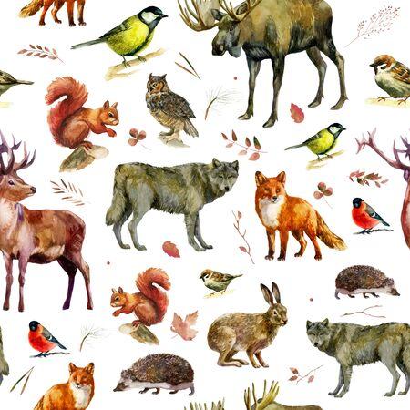 Ilustración acuarela, patrón. Animales del bosque sobre un fondo blanco. Alce, lobo, zorro, liebre, ardilla, erizo tit camachuelo búho ciervo gorrión