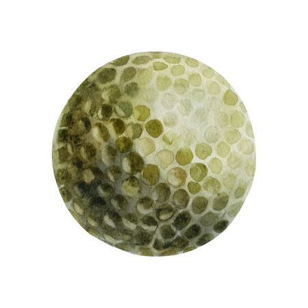 Watercolor illustration. Golf ball Sports Equipment. Golf game