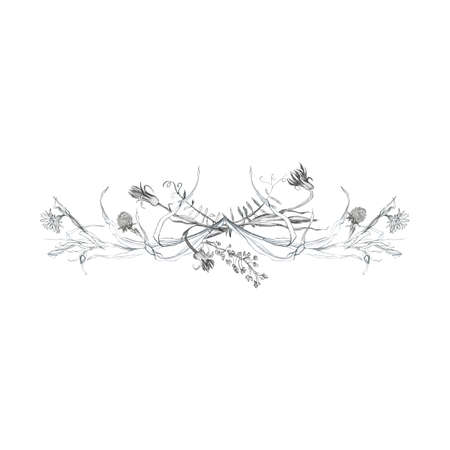 Illustration pencil, vignette. Drawing of birds, leaves and branches of plants. Freehand drawing on a white background. Archivio Fotografico