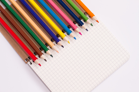 bright colored pencils lying on a spiral notebook in a cage