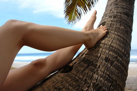 topicality: pair of legs of women on a trunk of coconut and blue bottom of a tropical lagoon and a white sand beach,  Stock Photo