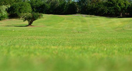 pastoral: pastoral landscape Stock Photo