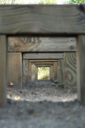 mislead: prospect on corridor for wood, Stock Photo