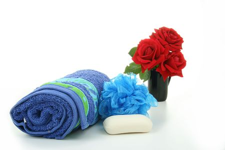 sopa: spa accessories, tol,sopa and flower shower