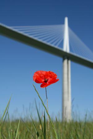 millau: bridge, viaduct of millau