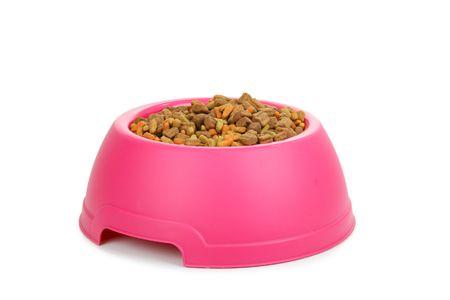Isolated dish of dog food  photo