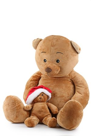 isolated christmas bear photo