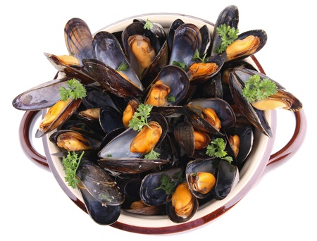 mussels on white background