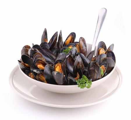 isolated plate of mussels