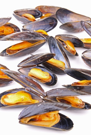 mussels: mussels Stock Photo