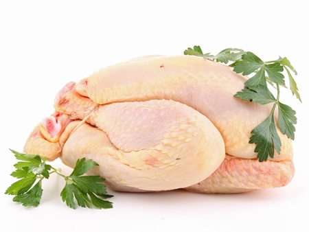 chicken meat: isolated raw chicken and parsley